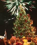mayor's tree