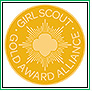 Gold Award Alliance Pin