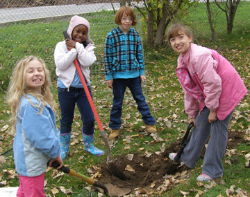 100 trees planting_North country 2012