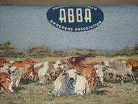 ABBA Blanket