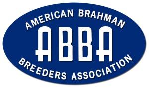 ABBA Logo
