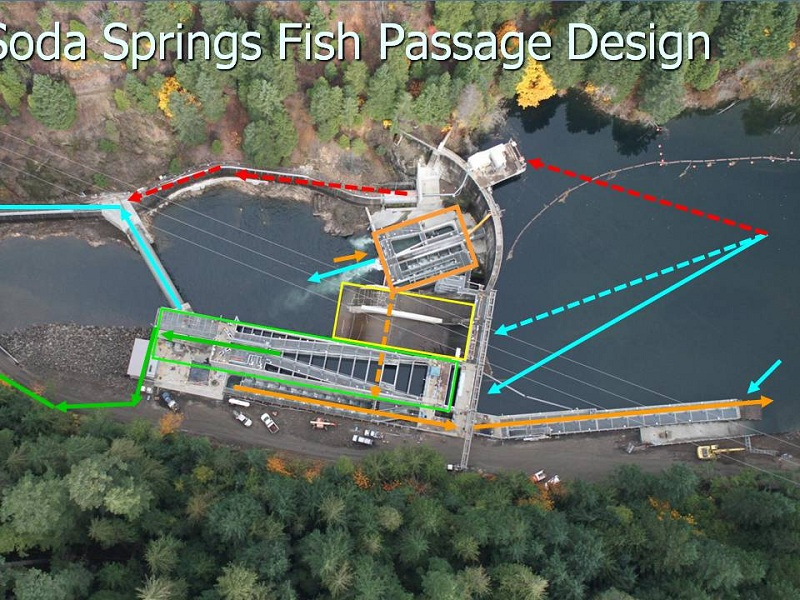 Soda Springs Fish Passage Design