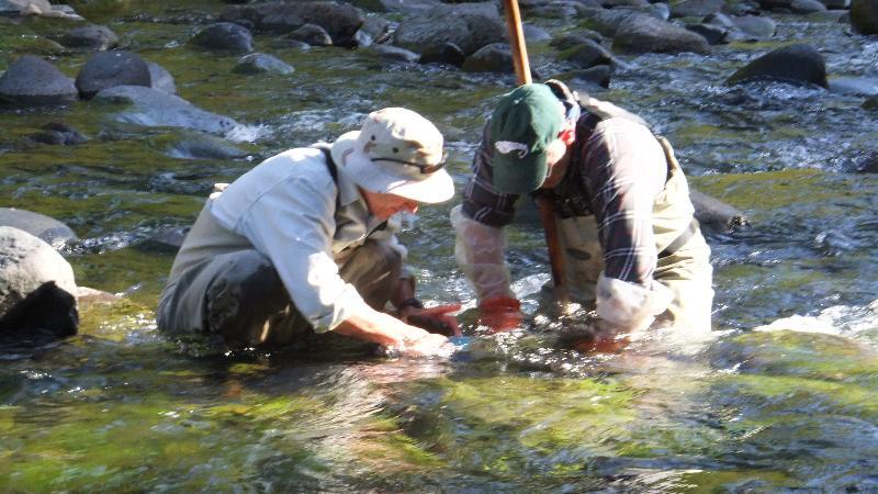 Josh Voynick and Alan Baumann scrubbing streambed