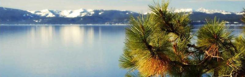Beginning of Winter in Tahoe