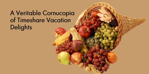 cornucopia 2