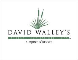 david walleys