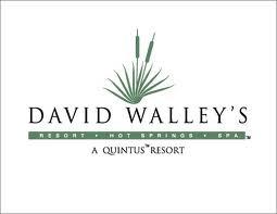 david walleys