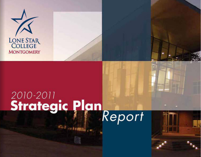2010-11 Strategic Plan Report