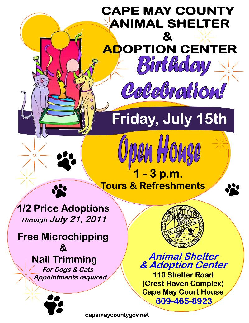 Animal Shelter Birthday Flyer