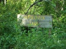 Horse Creek 1