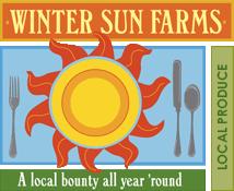 Winter sun logo