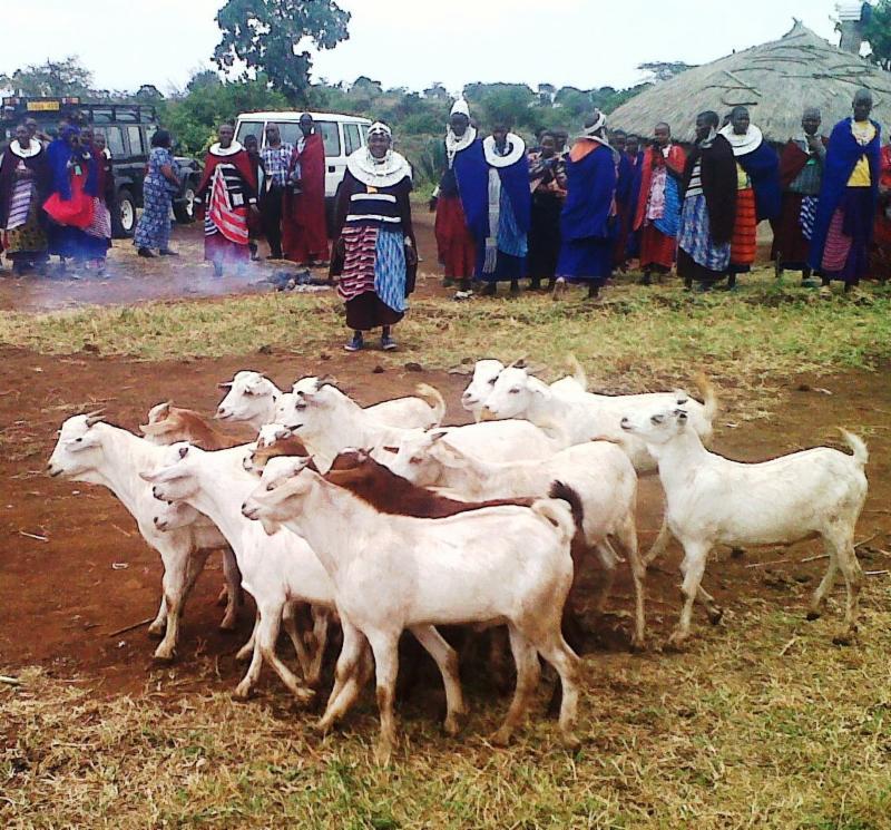 Monduli Women's Pastoral Organization project