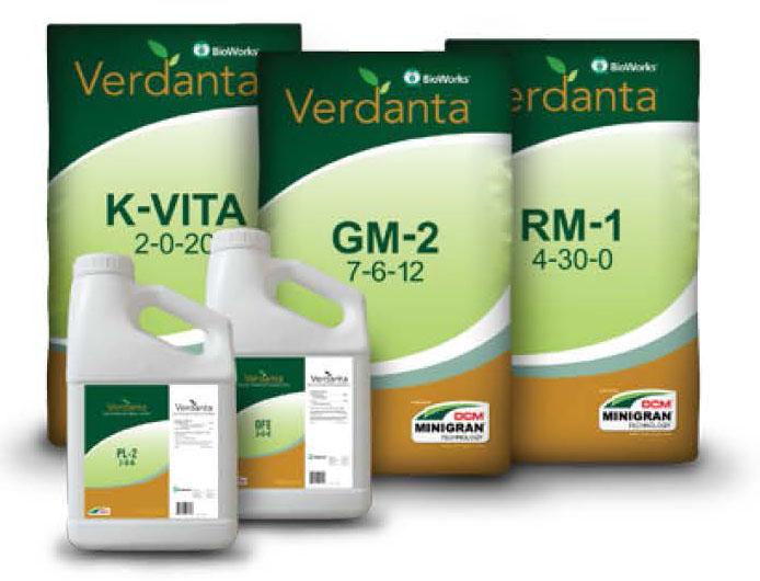Verdanta family