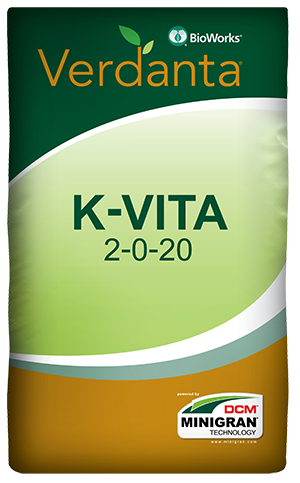 K-Vita Bag