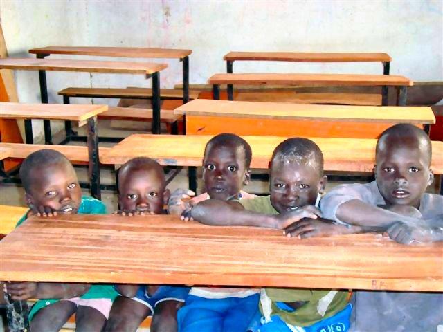 Boy Primary Students