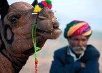 Journey to Rajasthan - Bainbridge Island, WA