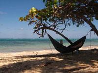 hammock-beach-reading