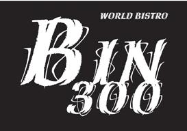 Bin 300 Logo