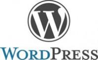 Why We Love WordPress
