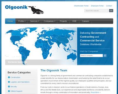 Olgoonik Family of Websites