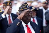 Veterans_Saluting
