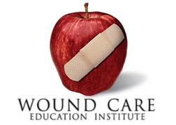 WCEI Logo