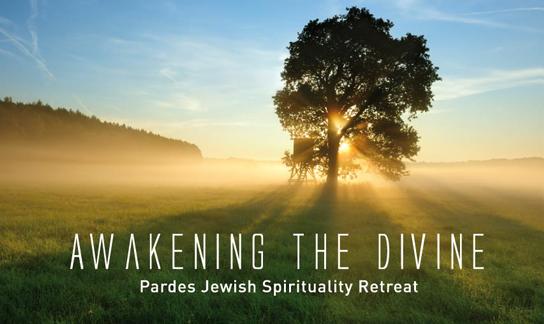 awakening the divine