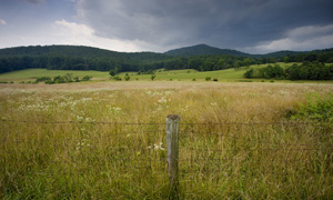 Bundoran Farm, Albemarle County, Virginia
