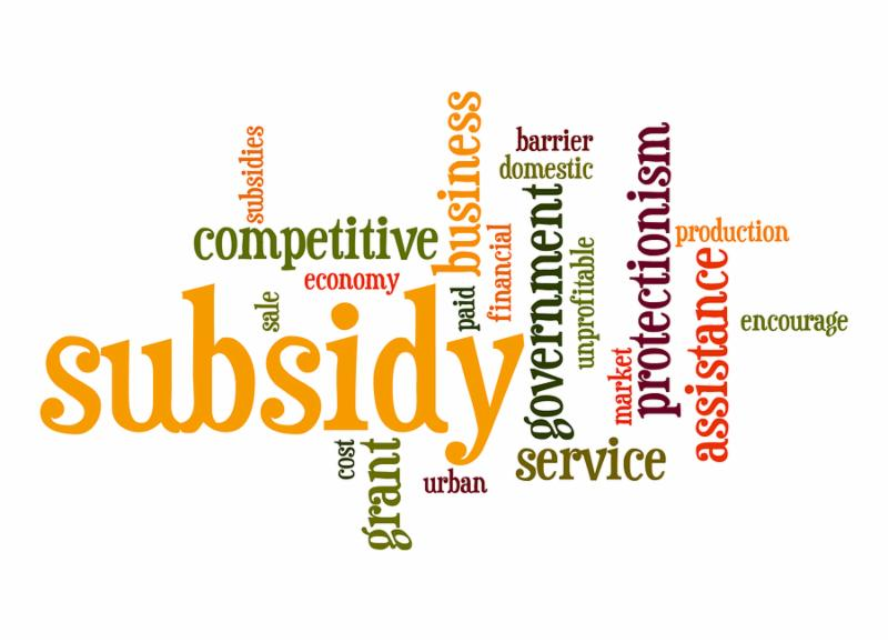 Subsidy word cloud image with hi-res rendered artwork that could be used for any graphic design.