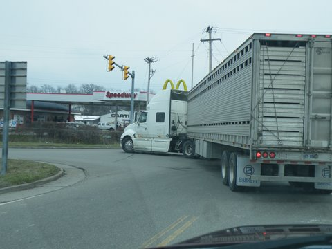 Canadian truck leaving Sugarcreek lon 4/2/11 loaded with horses