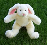 soynia bunny