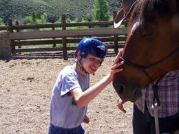 Horses & Water