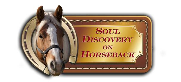 soul discovery logo new