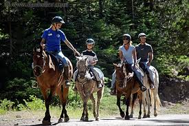 family on horse