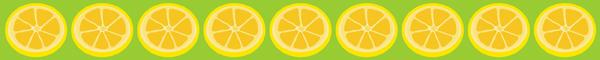 lemonslice banner