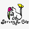 Spring for Cats