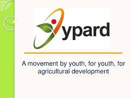 YPARD logo