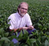 A man crouches in a field of plants.