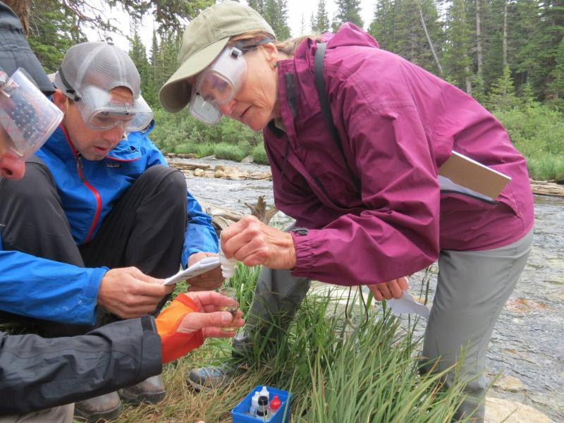 Teachers work together to take a sample near a stream.