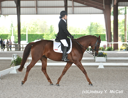 Ashley Gowanlock (CAN)  Grade Ib and Collegiate Sweet Leilani, owned by Kendalyne Overway. Photo by Lindsay McCall