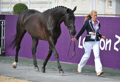 Horse Valencia Z ridden by Petra van de Sande Netherlands photo by Lindsay Y McCall