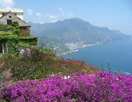 Aug 2014 News - Positano Cooking