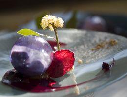 AGH Nov 2015 News Captivating Provence