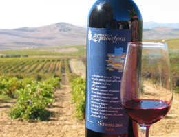 Dec 2010 News Wines of Sicily Photo