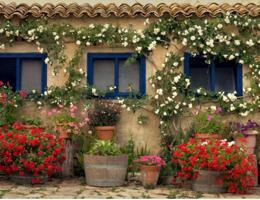 Aug 2012 News Delicious Sicily