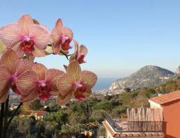 April 2016 News - Discovery of the Amalfi Coast