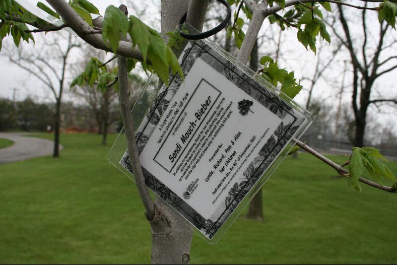 Dedicate a Tree