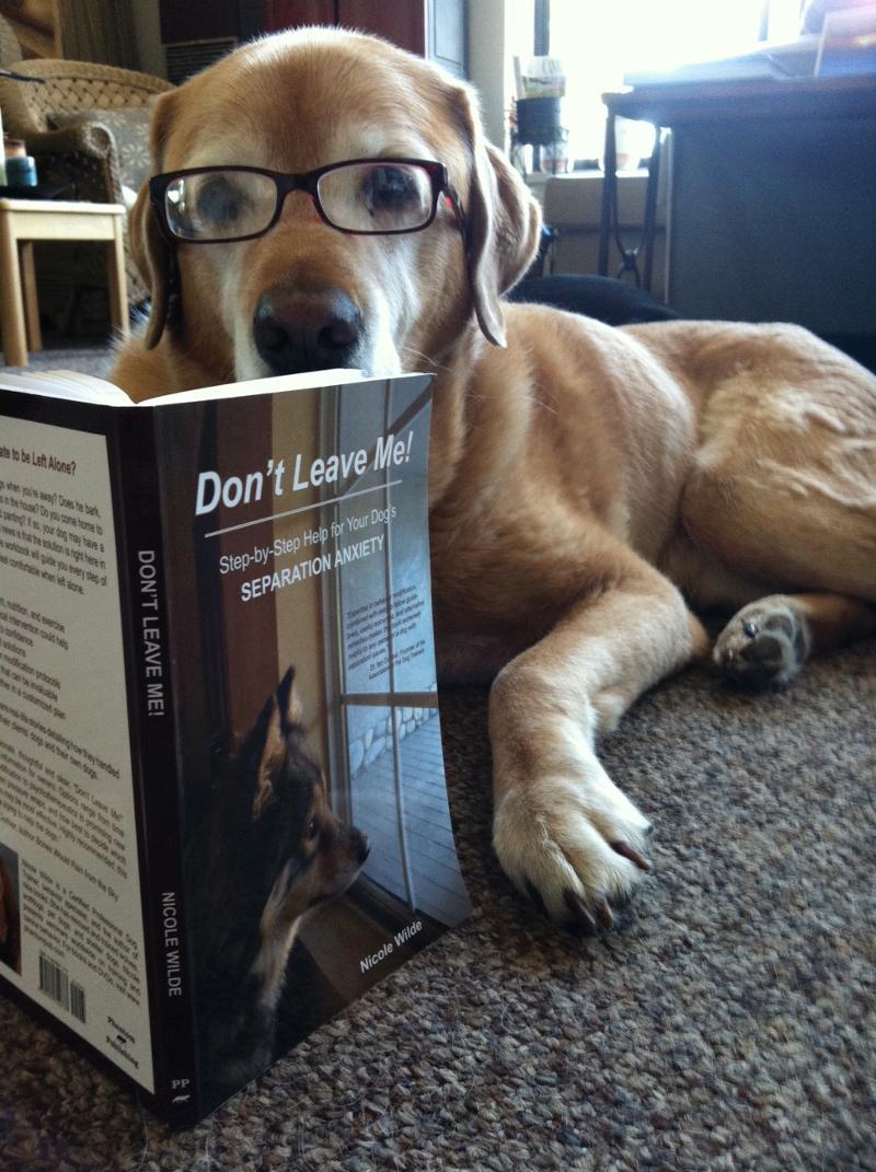 Sanchez reads Don't Leave Me