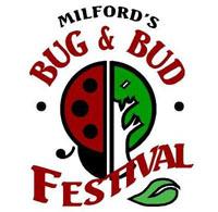 Bug and Bud