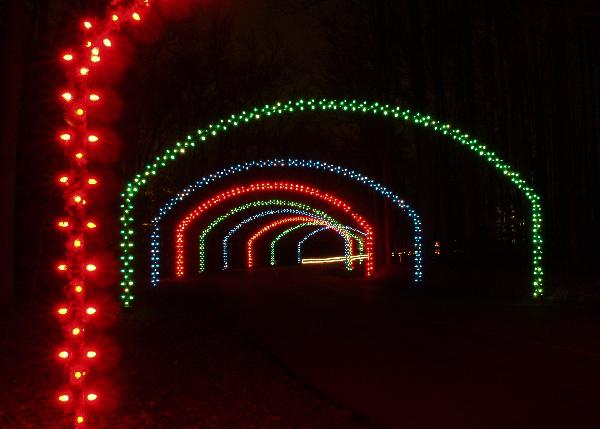 Festival of Lights arches
